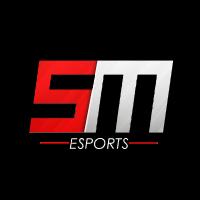 Self Made Esports's Profile Picture