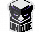 UNIQUE eSports's Profile Picture