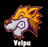 Velpu's Profile Picture