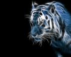 CoRe_x3's Profile Picture