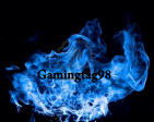 Gamingtag98's Profile Picture