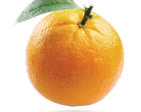 orange player's Profile Picture