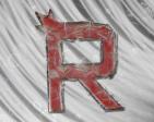 Team Raiden's Profile Picture