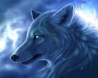 WinterHoly's Profile Picture