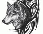 BlitzRaven's Profile Picture