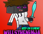 WillsTheNinja's Profile Picture