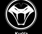 KurVa's Profile Picture