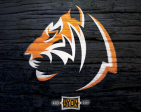 Team Lyon E-sport's Profile Picture