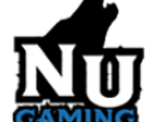 Team Nomad United Gaming's Profile Picture