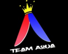 Team TeamAquaCS:GO's Profile Picture